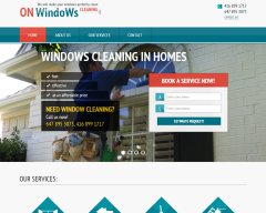 ON Windows Cleaning
